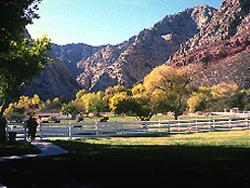 Spring Mountain Ranch State Park Las Vegas Nevada Vegas Com