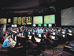 Sportsbook casino review
