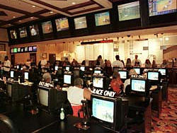 Race And Sportsbook Employment In Nevada - image 5
