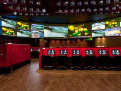 Hard Rock Hotel Race and Sports Book powered by CG Technology