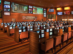 M Resort Sports Book