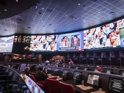 Cantor Race and Sports Book at the Palms
