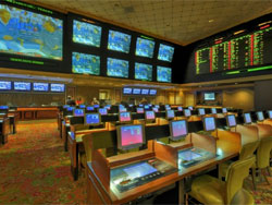 Treasure Island Sports Book