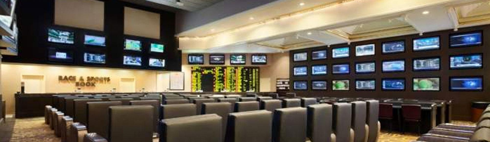 Flamingo sports betting binary options 0 1 netting