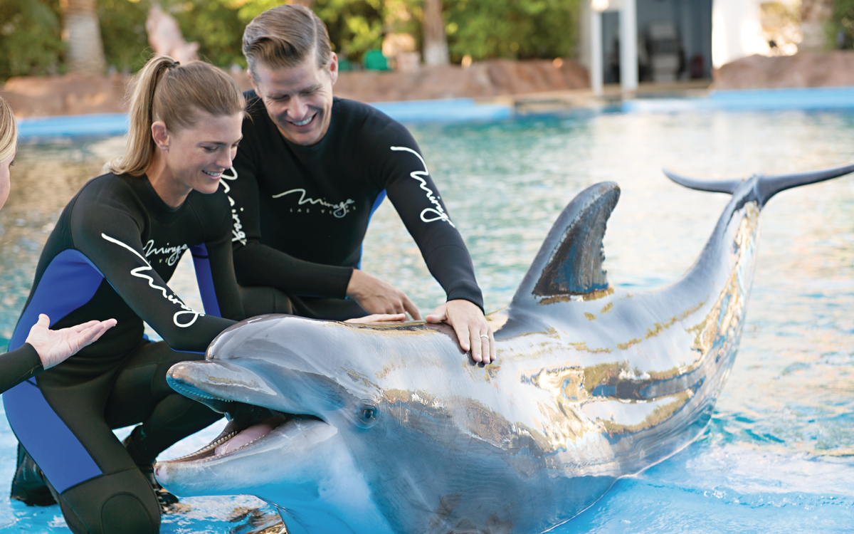 Siegfried and Roy's Secret Garden and Dolphin Habitat - Siegfried and Roy's Secret Garden Habitat