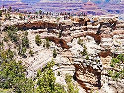 Grand Canyon South Rim VIP Tour