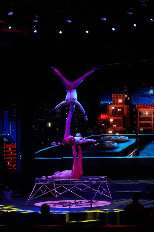 WOW – The Vegas Spectacular - Wow Slideshow 13