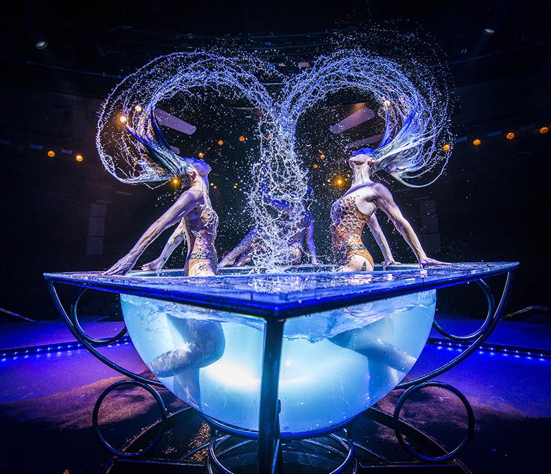 WOW – The Vegas Spectacular - Wow Slideshow 22