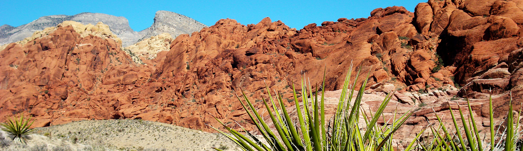 Red Rock Canyon Tour tour