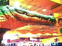 Alligator Bar