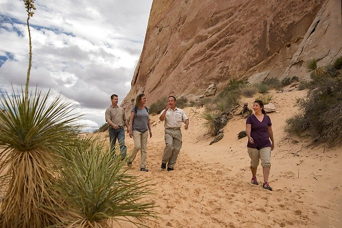 A Valley of Fire Tour