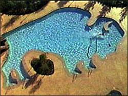 The pool at buffalo bill 39 s for Swimmingpool billig