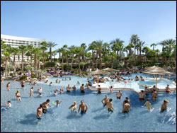 The Pool At Hard Rock Hotel Las Vegas