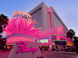 Image result for pink flamingo hotel las vegas images