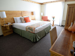 Hooters Standard Room with King Bed