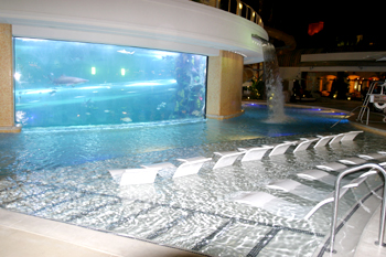 Golden Nugget Hotel Casino pool