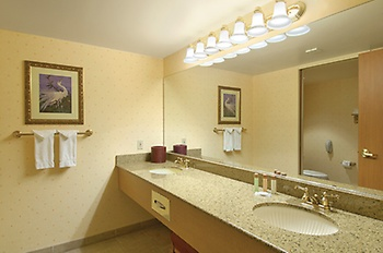 Bathroom in the deluxe two-queen room