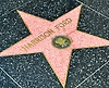 Hollywood Walk of Fame: Harrison Ford star