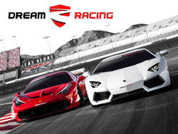 Dream Racing Experience