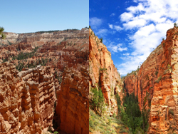 Zion & Bryce Overnight Walking Tour